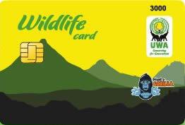 180614141800--UWA Card.png